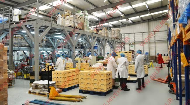 تولید کننده میوه جات خشک در ایران
