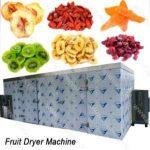 عرضه مستقیم میوه خشک صنعتی